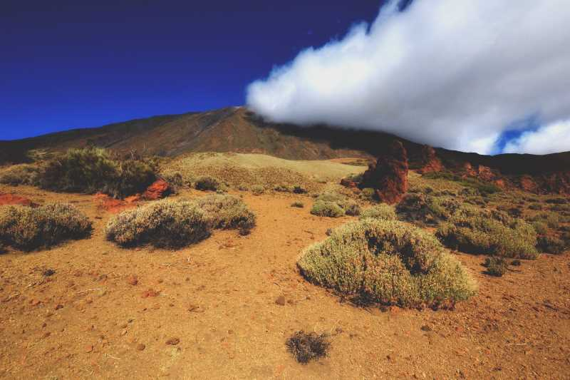 Mount Teide Park-see if by quad bike or hike