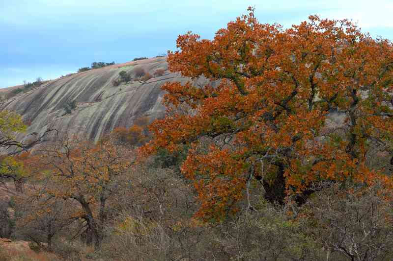 Enchanted Rock State Park Texas - climb the Dome